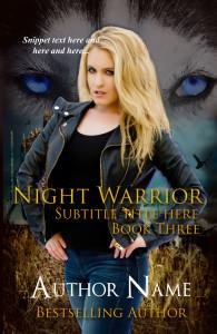 Night Warrior Three E